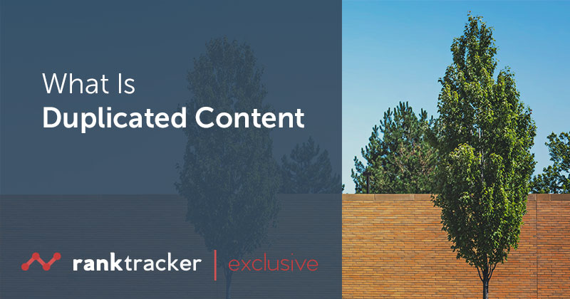 What Is Duplicated Content